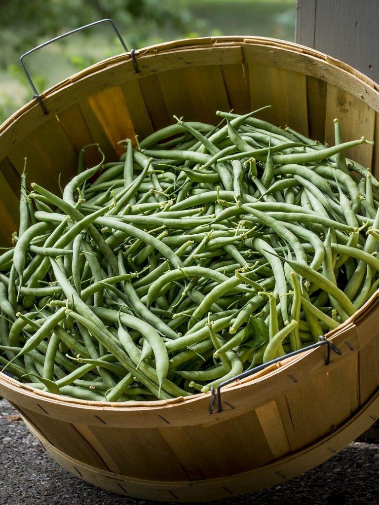 Healthy Green Beans recipe